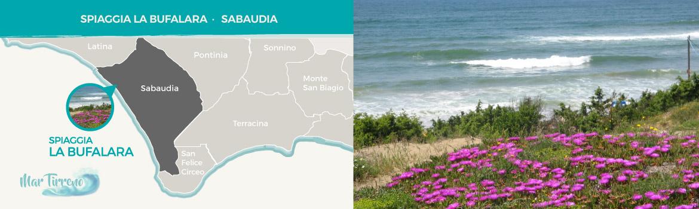 spiaggia-la-bufalara-sabaudia-provincia-di-latina-latinamipiace