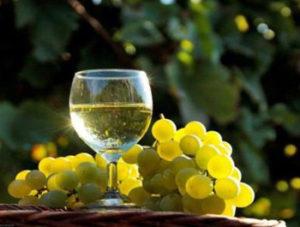 vino-moscato-di-terracina-latinamipiace