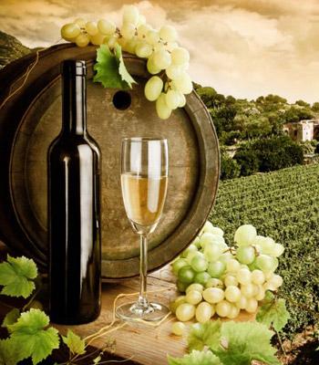 cori-doc-vino-bianco-latinamipiace