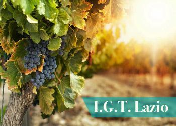 igt-lazio-vino-provincia-latina-latinamipiace