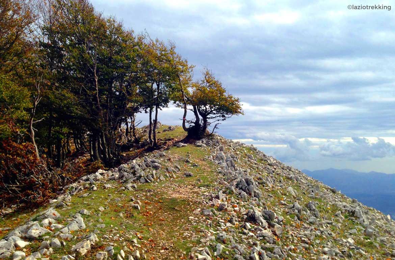 Monte-Semprevisa-Trekking-ed-Escursioni-città-di-Latina-latinamipiace
