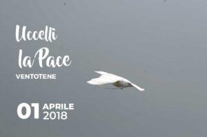 Uccelli per la pace a Ventotene @ Ventotene | Ventotene | Lazio | Italia