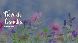 I fiori di Camilla a Priverno @ Priverno | Priverno | Lazio | Italia