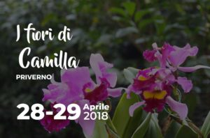 I fiori di Camilla a Priverno @ Priverno   Priverno   Italia