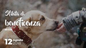Sfilata di Beneficenza a Sezze @ Sezze