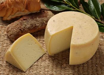 Caciotta-Romana-di-Aprilia-prodotti-tradizionali-provincia-di-latina-latinamipiace