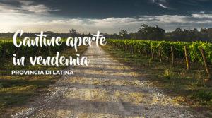 Cantine aperte in vendemmia a Latina