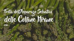 Festa dell'Asparago Selvatico delle Colline Itrane @ Itri