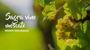Sagra Vino Moscato a Monte San Biagio @ Monte San Biagio | Monte San Biagio | Lazio | Italia