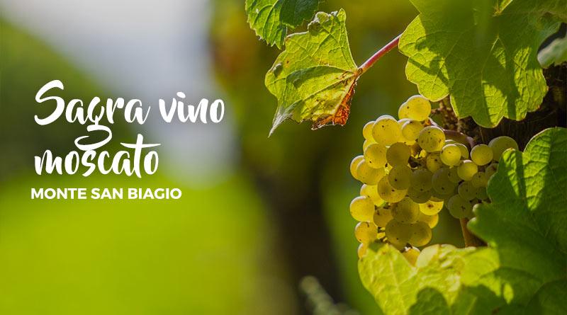San Biagio Giorno Calendario.Sagra Vino Moscato A Monte San Biagio Latinamipiace It